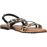 Παπούτσια Γυναίκα Σανδάλια / Πέδιλα Jeiday JUNGLA-SALLY Μαύρος