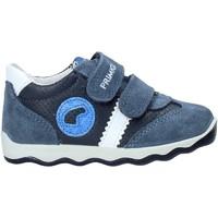 Παπούτσια Παιδί Χαμηλά Sneakers Primigi 5352922 Μπλε