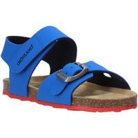 Παπούτσια Παιδί Σανδάλια / Πέδιλα Grunland SB0372 Μπλε