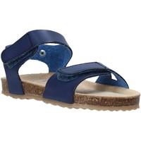 Παπούτσια Παιδί Σανδάλια / Πέδιλα Grunland SB1550 Μπλε