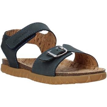 Παπούτσια Παιδί Σανδάλια / Πέδιλα Grunland SB1565 Μπλε