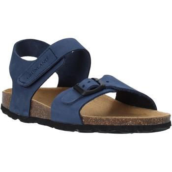Παπούτσια Παιδί Σανδάλια / Πέδιλα Grunland SB0236 Μπλε