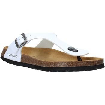Παπούτσια Άνδρας Σαγιονάρες Grunland CB3014 λευκό
