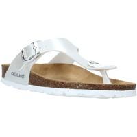 Παπούτσια Παιδί Σαγιονάρες Grunland CB2419 λευκό