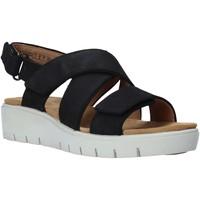 Παπούτσια Γυναίκα Σανδάλια / Πέδιλα Clarks 26140238 Μαύρος