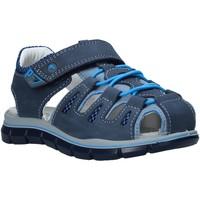 Παπούτσια Παιδί Σανδάλια / Πέδιλα Primigi 5392711 Μπλε