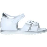 Παπούτσια Κορίτσι Σανδάλια / Πέδιλα Nero Giardini E021463F λευκό