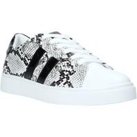 Παπούτσια Γυναίκα Χαμηλά Sneakers Gold&gold A20 GA245 Μαύρος