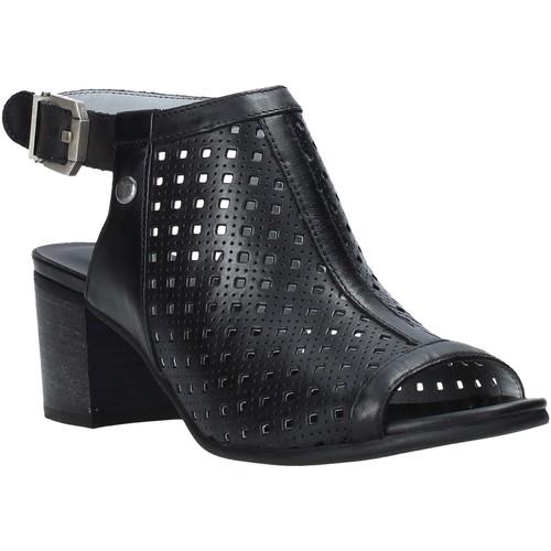 Παπούτσια Γυναίκα Σανδάλια / Πέδιλα NeroGiardini E012290D Μαύρος