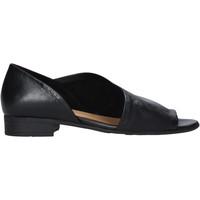 Παπούτσια Γυναίκα Σανδάλια / Πέδιλα Bueno Shoes N5112 Μαύρος