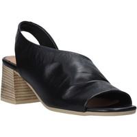 Παπούτσια Γυναίκα Σανδάλια / Πέδιλα Bueno Shoes N1300 Μαύρος