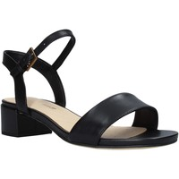 Παπούτσια Γυναίκα Σανδάλια / Πέδιλα Clarks 26139339 Μαύρος