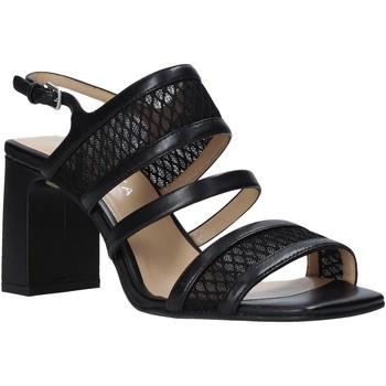 Παπούτσια Γυναίκα Σανδάλια / Πέδιλα Apepazza S0MONDRIAN10/NET Μαύρος