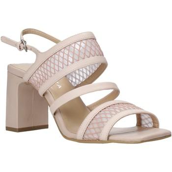 Παπούτσια Γυναίκα Σανδάλια / Πέδιλα Apepazza S0MONDRIAN10/NET Ροζ