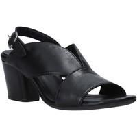 Παπούτσια Γυναίκα Σανδάλια / Πέδιλα Bueno Shoes N2603 Μαύρος