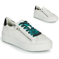 Παπούτσια Γυναίκα Χαμηλά Sneakers Tamaris MILANIA Άσπρο