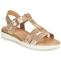Παπούτσια Γυναίκα Σανδάλια / Πέδιλα Geox D SANDAL HIVER B Gold