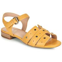 Παπούτσια Γυναίκα Σανδάλια / Πέδιλα Geox D WISTREY SANDALO C Yellow