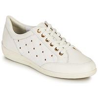 Παπούτσια Γυναίκα Χαμηλά Sneakers Geox D MYRIA H Άσπρο / Gold