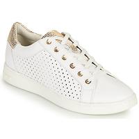 Παπούτσια Γυναίκα Χαμηλά Sneakers Geox D JAYSEN B Άσπρο / Gold