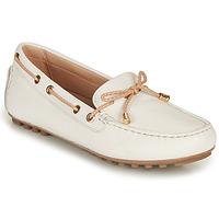 Παπούτσια Γυναίκα Μοκασσίνια Geox D LEELYAN C Άσπρο / Beige