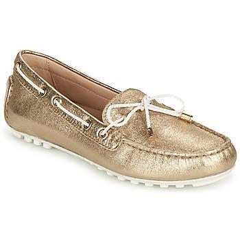Παπούτσια Γυναίκα Μοκασσίνια Geox D LEELYAN C Gold / Άσπρο
