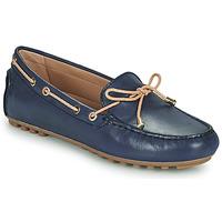Παπούτσια Γυναίκα Μοκασσίνια Geox D LEELYAN C Μπλέ / Beige