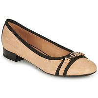 Παπούτσια Γυναίκα Μπαλαρίνες Geox D WISTREY D Beige / Black