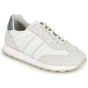Παπούτσια Άνδρας Χαμηλά Sneakers Geox U FIDENZA B Άσπρο / Μπλέ