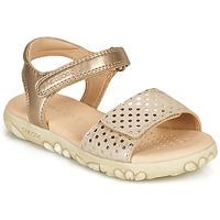 Παπούτσια Κορίτσι Σανδάλια / Πέδιλα Geox SANDAL HAITI GIRL Beige / Gold