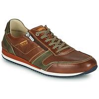 Παπούτσια Άνδρας Χαμηλά Sneakers Pikolinos LIVERPOOL M2A Brown