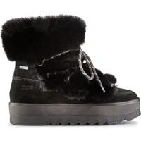 Παπούτσια Γυναίκα Μποτίνια Cougar Vanity Suede  Μαύρος