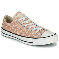 Παπούτσια Γυναίκα Χαμηλά Sneakers Converse CHUCK TAYLOR ALL STAR CANVAS BRODERIE OX Beige