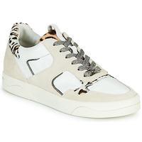 Παπούτσια Γυναίκα Χαμηλά Sneakers Mam'Zelle ARTIX Άσπρο / Leopard