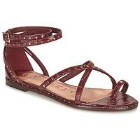 Παπούτσια Γυναίκα Σανδάλια / Πέδιλα Ted Baker MATHAR Brown