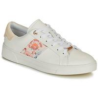 Παπούτσια Γυναίκα Χαμηλά Sneakers Ted Baker HUDEP Άσπρο