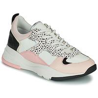 Παπούτσια Γυναίκα Χαμηλά Sneakers Ted Baker IZSLA Άσπρο / Ροζ