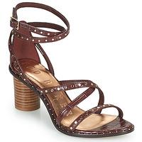 Παπούτσια Γυναίκα Σανδάλια / Πέδιλα Ted Baker KATHAR Brown