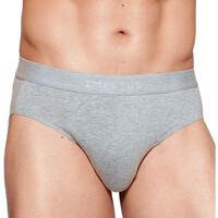 Εσώρουχα Άνδρας Slips Impetus 1120B45 507 Grey