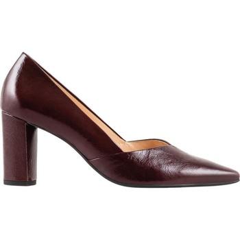 Παπούτσια Γυναίκα Γόβες Högl Business Bordo Red
