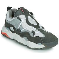 Παπούτσια Άνδρας Χαμηλά Sneakers Globe OPTION EVO Grey