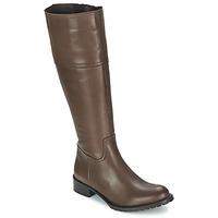 Παπούτσια Γυναίκα Μπότες για την πόλη Betty London CAVAK Brown
