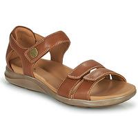 Παπούτσια Γυναίκα Σανδάλια / Πέδιλα Clarks KYLYN STRAP Beige