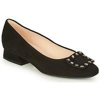 Παπούτσια Γυναίκα Μπαλαρίνες Peter Kaiser ZWONIZ Black