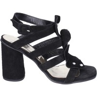 Παπούτσια Γυναίκα Σανδάλια / Πέδιλα Sergio Cimadamore Σανδάλια BK865 Μαύρος