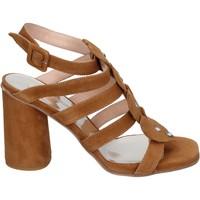 Παπούτσια Γυναίκα Σανδάλια / Πέδιλα Sergio Cimadamore Σανδάλια BK866 καφέ