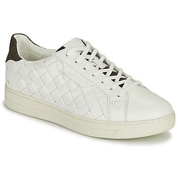 Παπούτσια Γυναίκα Χαμηλά Sneakers MICHAEL Michael Kors KEATING LACE UP Άσπρο / Brown
