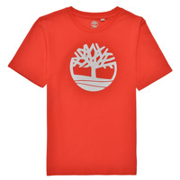 Υφασμάτινα Αγόρι T-shirt με κοντά μανίκια Timberland LOLLA Red