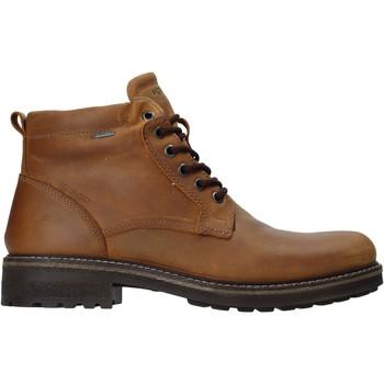 Παπούτσια Άνδρας Μπότες IgI&CO 4122422 καφέ