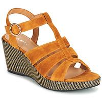 Παπούτσια Γυναίκα Σανδάλια / Πέδιλα Adige FLORY V4 UNDER SAFRAN Yellow